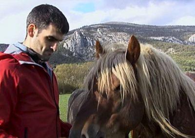 # Joseba Ezkurdia, zaldi artean finalari begira